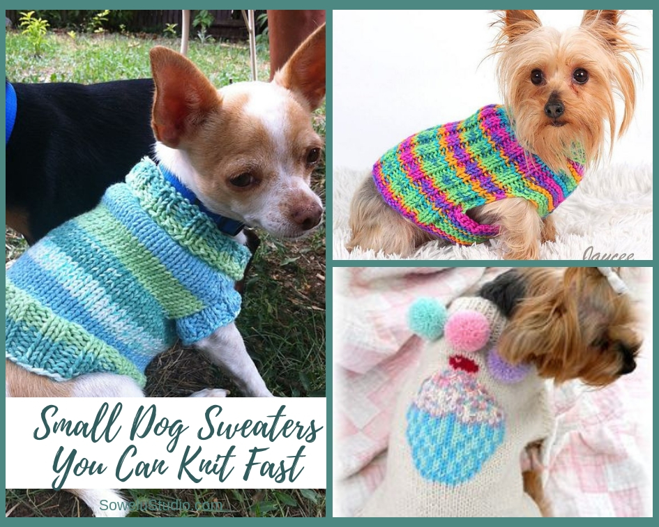 Small Dog Sweaters You Can Knit In A Flash Sowelu Studio